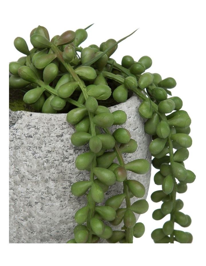 Hanging Pearls In Tub Pot 13cm Grey image 2