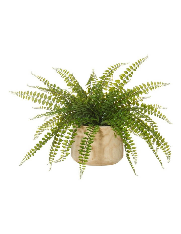 Rogue Jewel Fern Dansk Tub Pot image 1