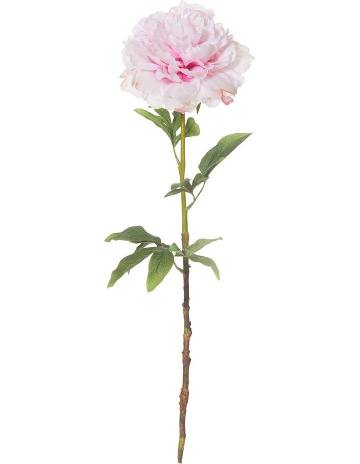 Peony Stem Pink image 1