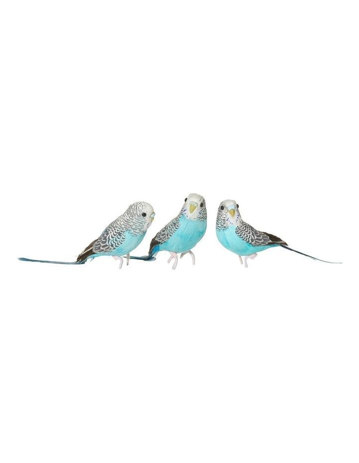 Grey/Blue Budgies image 1
