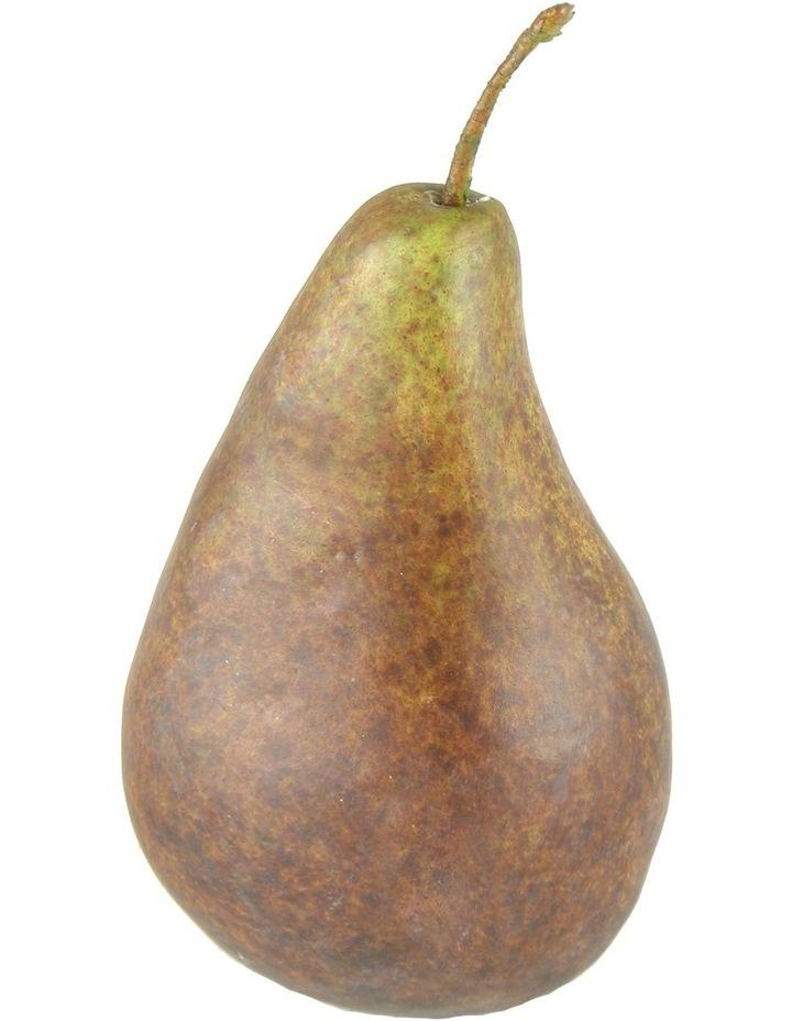 Bartlet Pear image 1