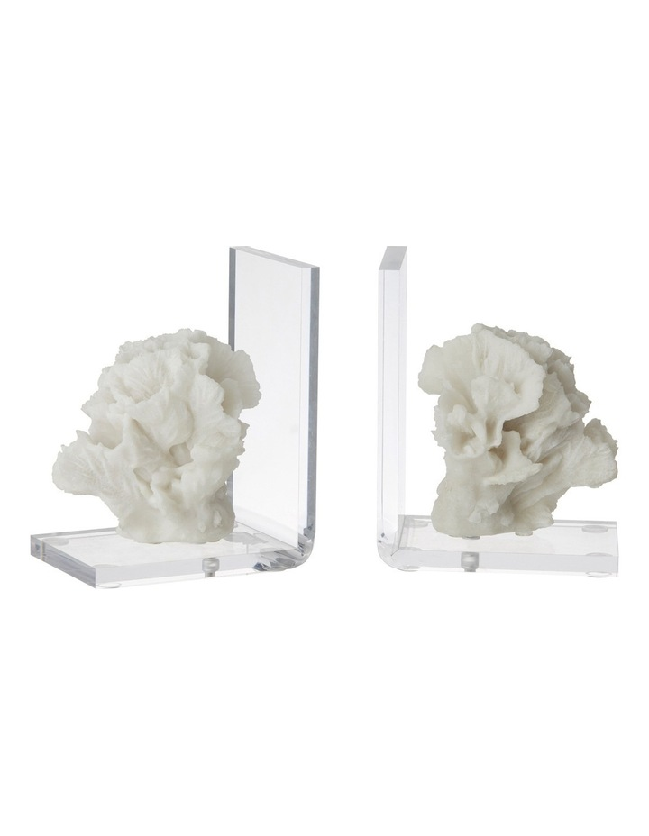 S/2 Coral Bookends image 1