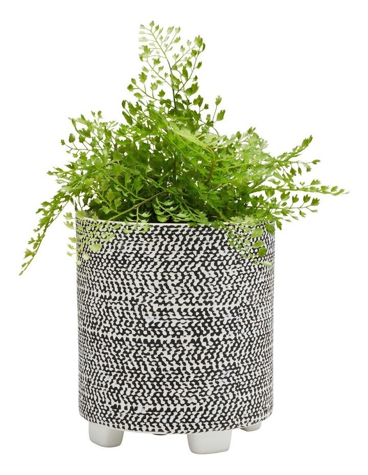 Raww Planter Weave image 2
