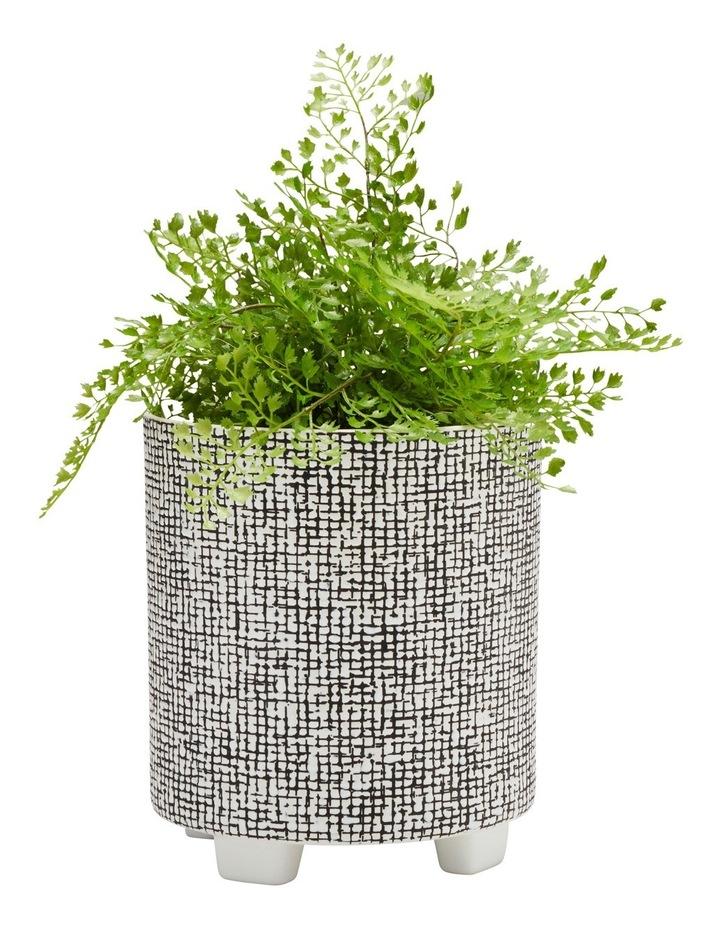 Raww Planter Thatch image 2