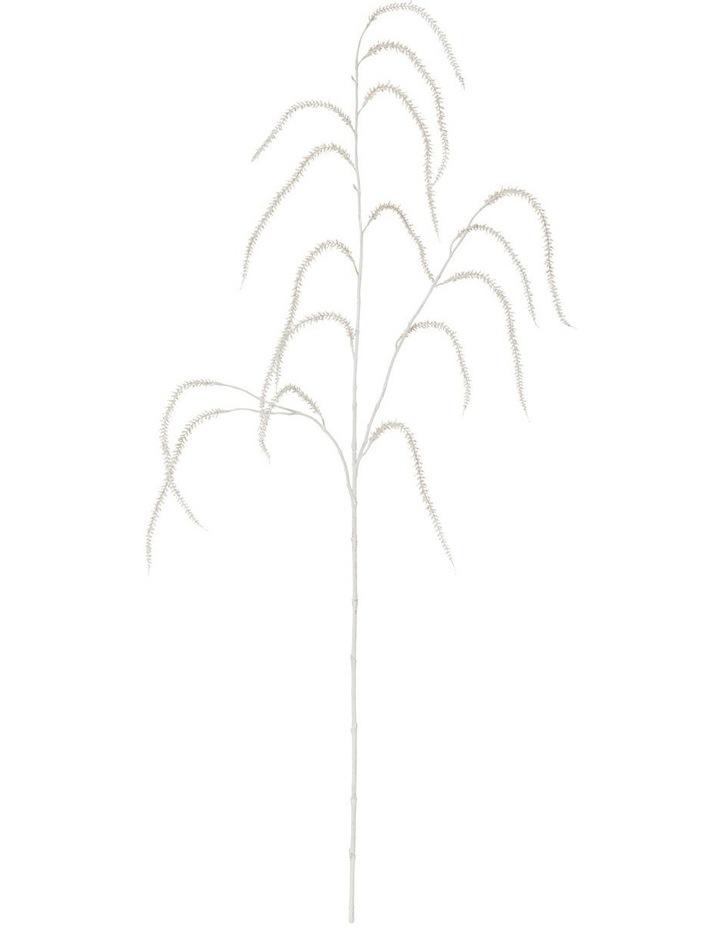 Washed Amaranthus Spray 119cm image 1