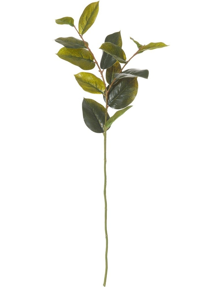 Lemon Leaf Spray image 1
