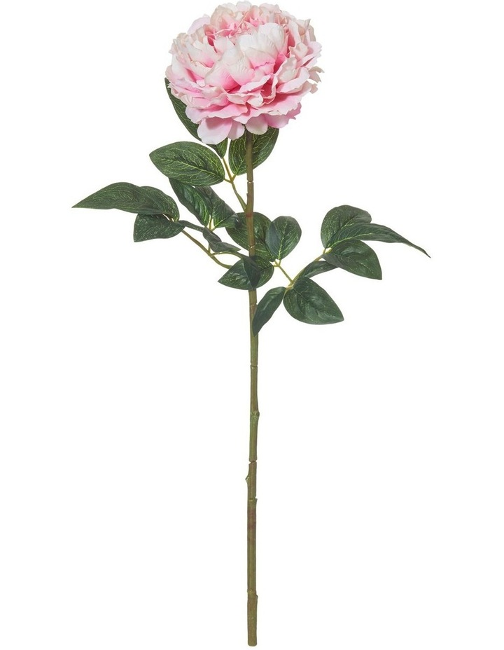 Peony Stem Pink 71cm image 1