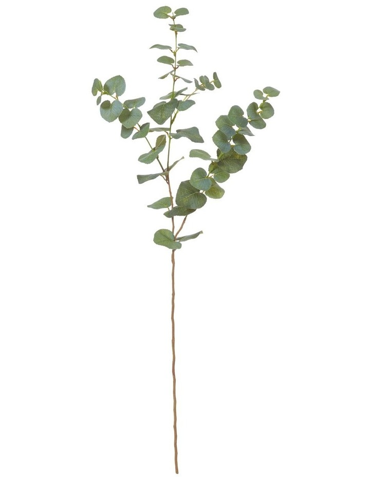 Wattle Grove By Rogue Eucalyptus Spray Green 78cm image 1