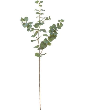 Artificial Flowers & Botanicals | MYER