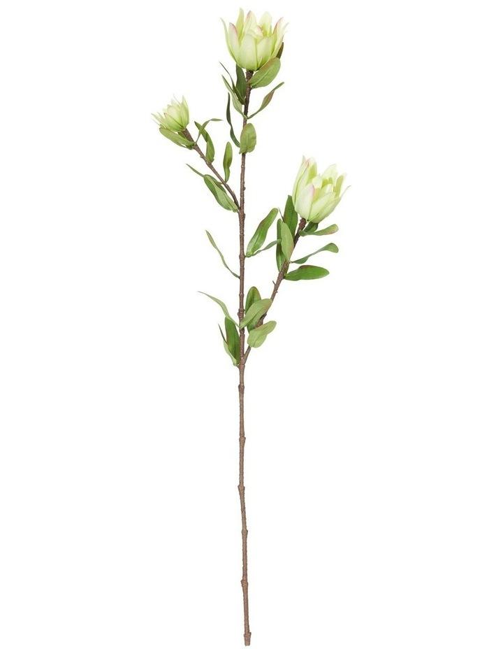 Protea Spray Green 88cm image 1