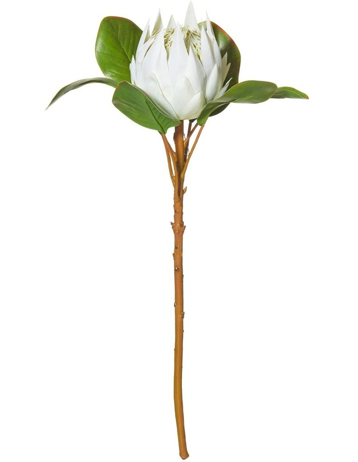 King Protea Stem White 54cm image 1