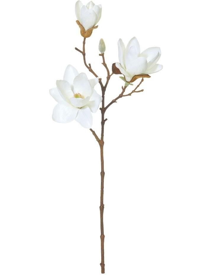 Magnolia Spray 20x12x48cmWht image 1