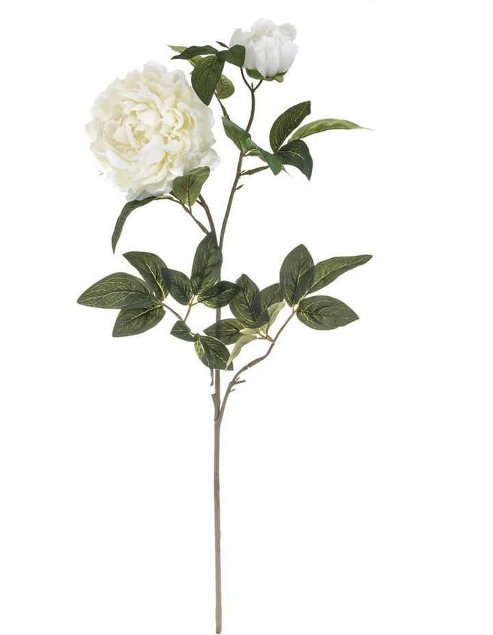 Garden Collection By Rogue Peony Spray White image 1