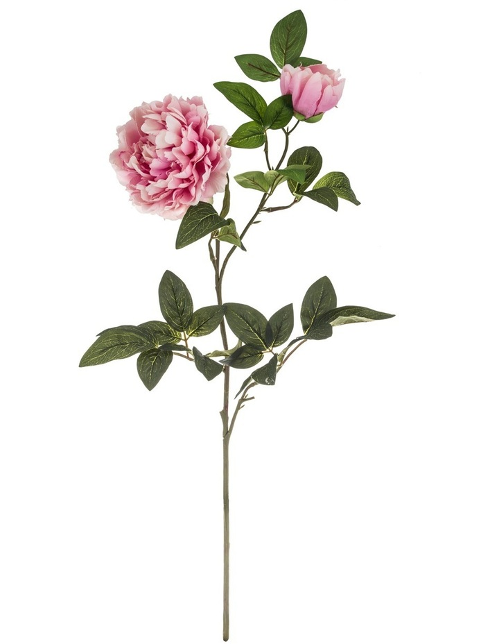 Garden Collection By Rogue Peony Spray Pink image 1