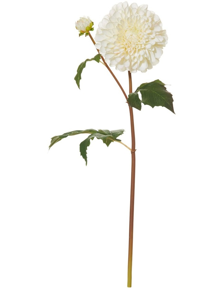 Garden Collection By Rogue Pom Pom Dahlia Stem Cream image 1