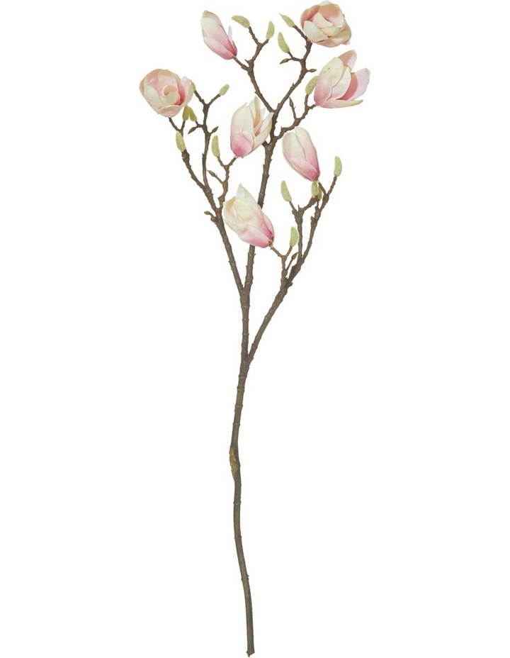 Garden Collection By Rogue Japanese Magnolia Branch Pink image 1