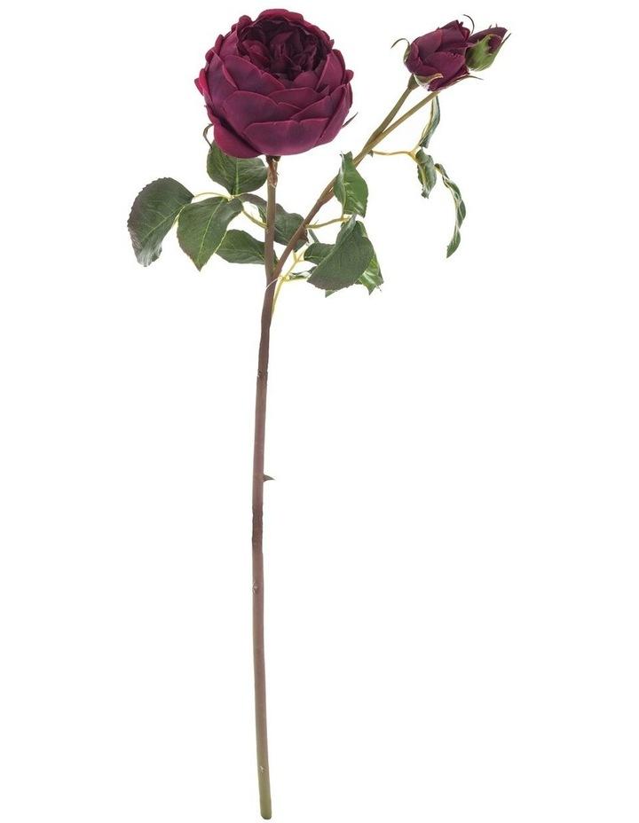 English Rose Spray Red image 1