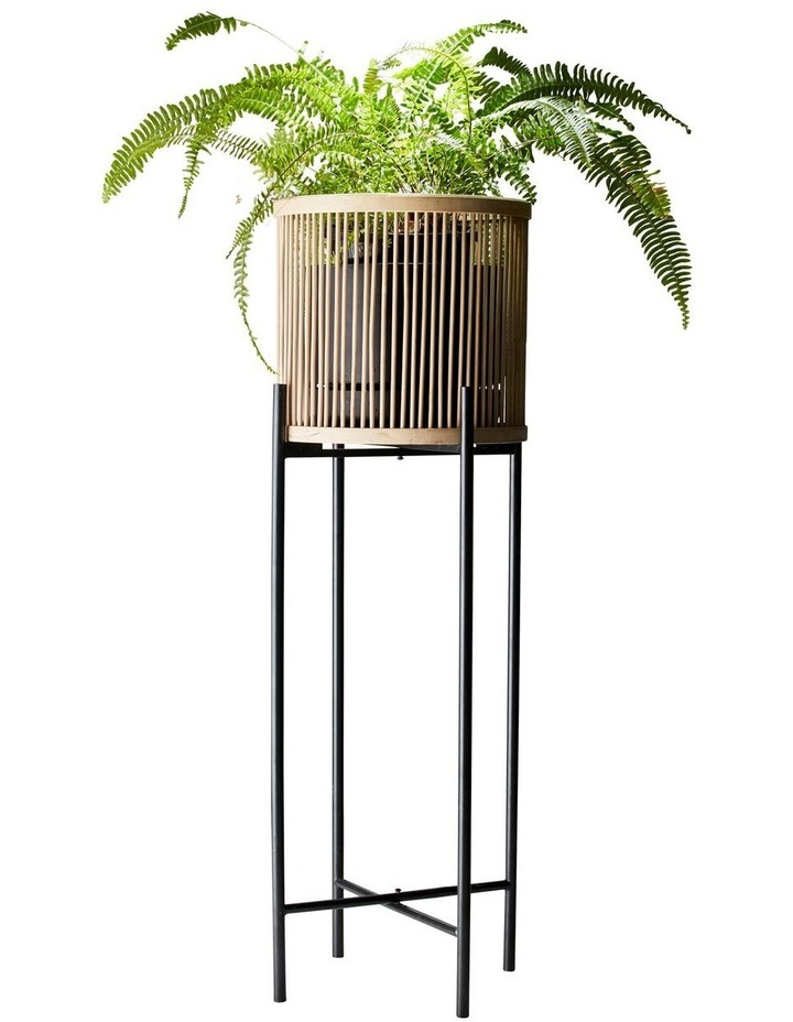 RHYTHM Plant Stand - Natural - 32x100cm image 2