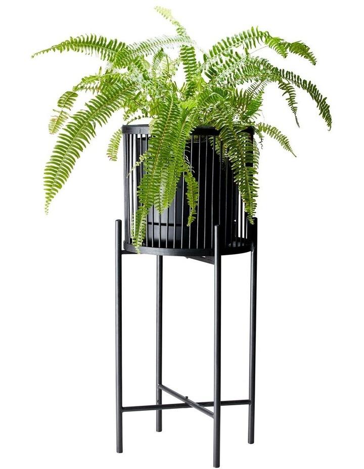 RHYTHM Plant Stand - Black - 32x80cm image 2