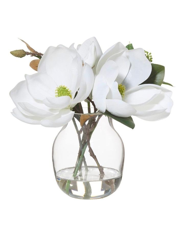 Magnolia Bouquet in Adina Vase image 1