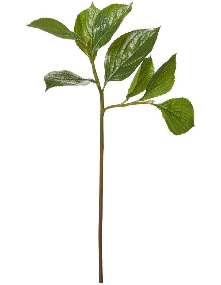 Hydrangea Leaf Spray Green 30x25x65cm image 1