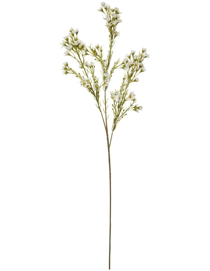 Wax Flower Stem White 25x15x69cm image 1