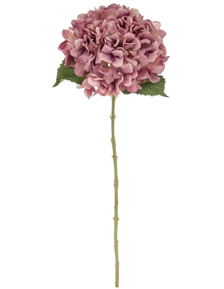 Hydrangea Stem Dusty Pink image 1