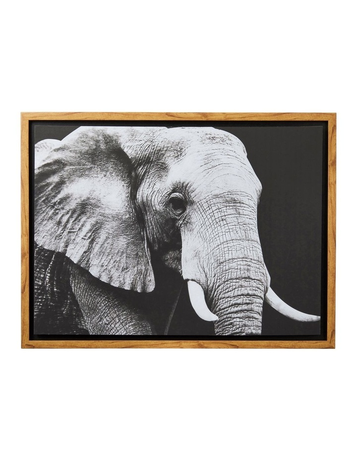 Wild Safari Elephant Wall Decor Black/White 60x80cm image 1