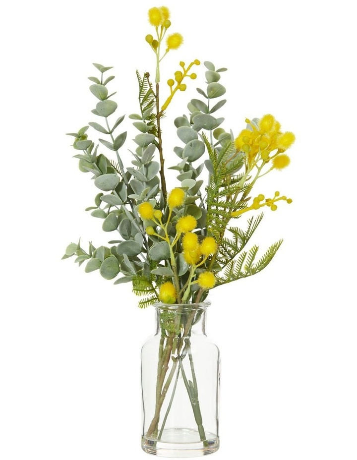 Wattle Mix in Specimen Bottle Yellow 26x15x28cm image 1