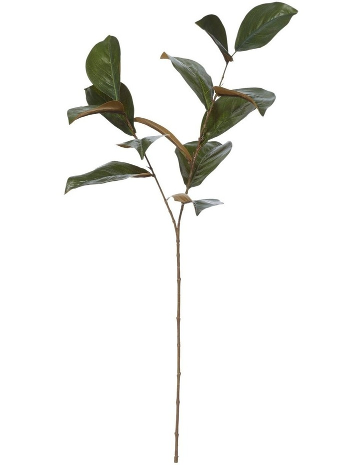 Magnolia Leaves 25x16x76cm Artificial Flower Stems in Green image 1