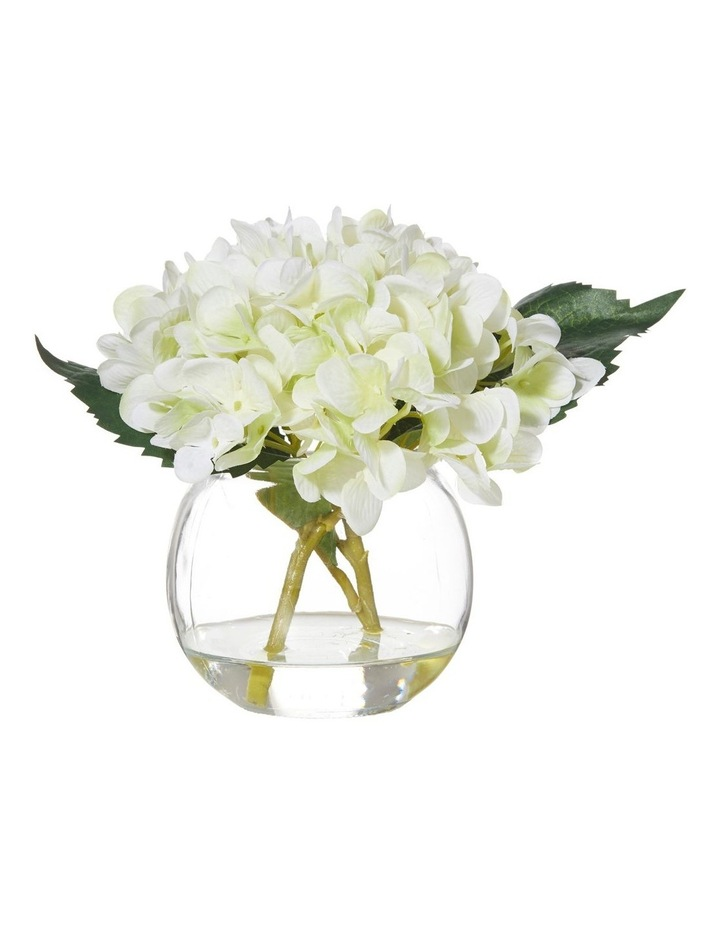 Hydrangea in Glass Fish Bowl White 22x16x18cm image 1