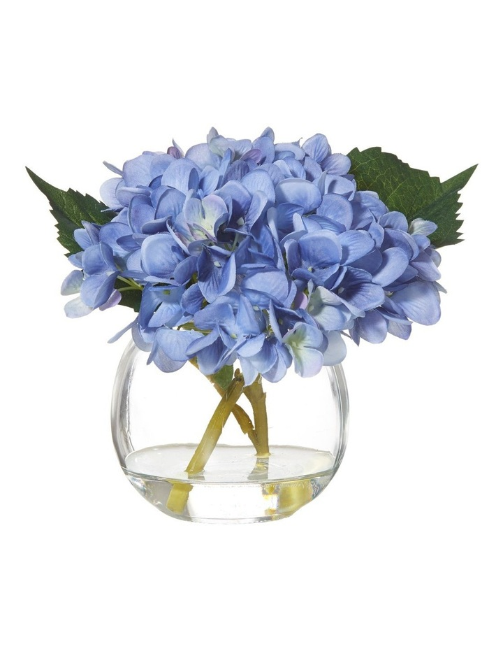 Hydrangea In Glass Fish Bowl Blue 22x16x18cm by Rogue