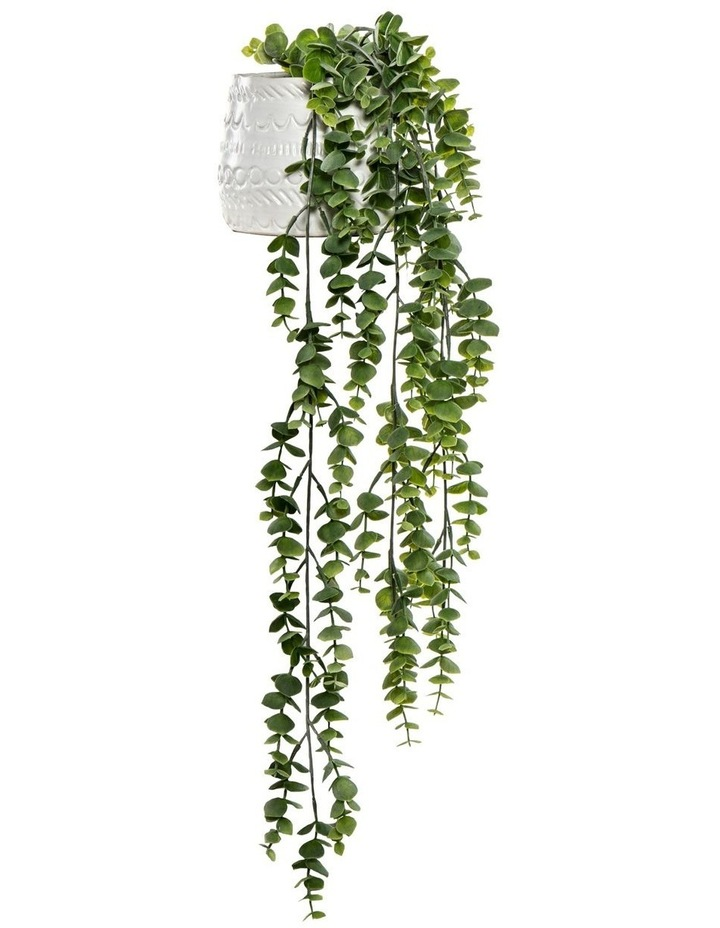 Hanging Silver Leaf In Tully Pot Green/White 55cm image 1