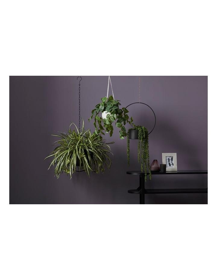 Artificial Hanging Aluminium Plant in Bowl Green/Cream 40x30x84cm image 2