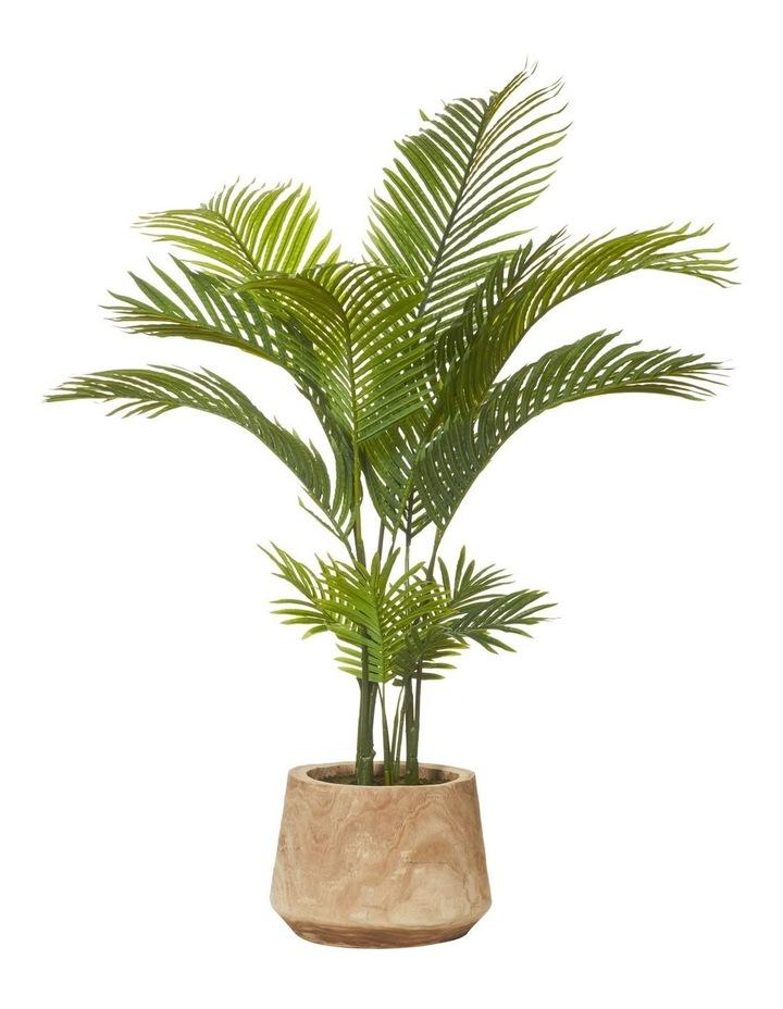 Areca Palm in Dansk Pot Green/Natural 100x100x137cm image 1