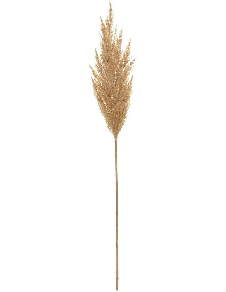 Pampas Grass Spray Beige 92cm image 1