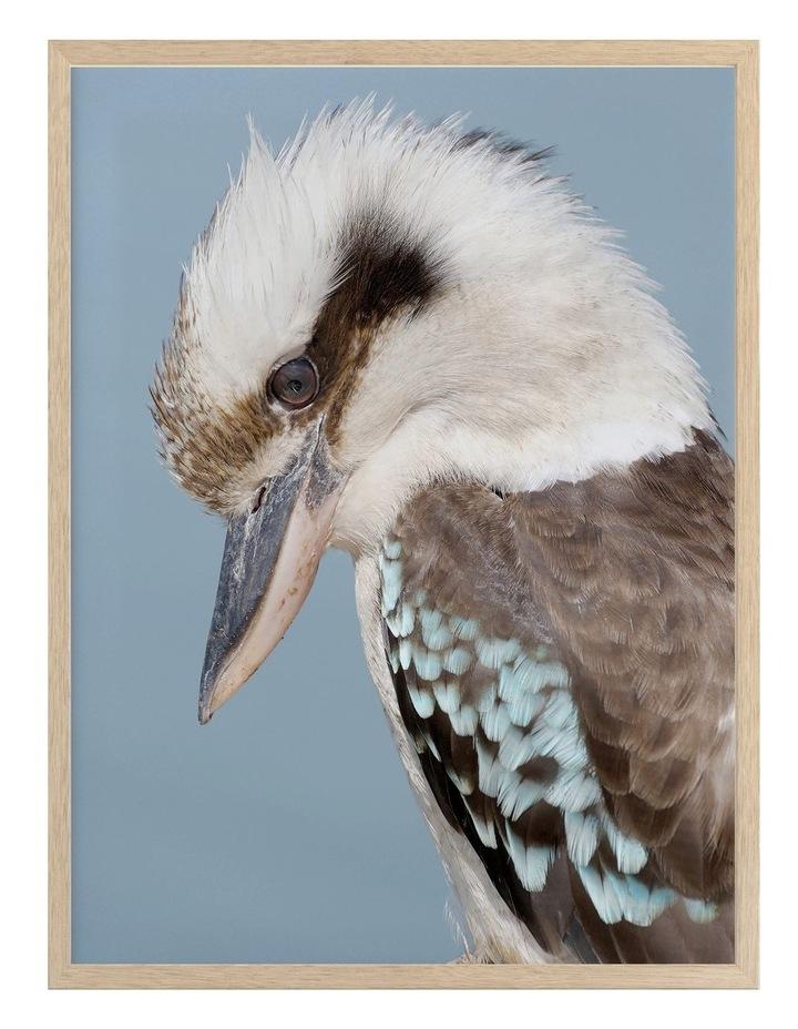 Kookaburra Oak Frame image 1