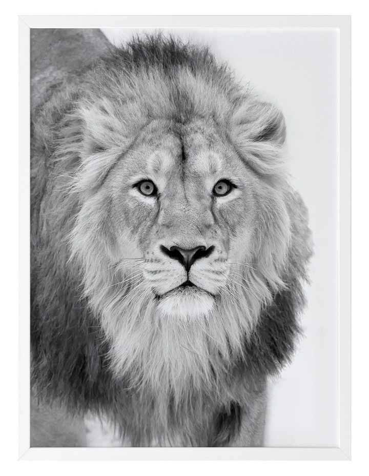 Lion Hunt Print White Frame image 1