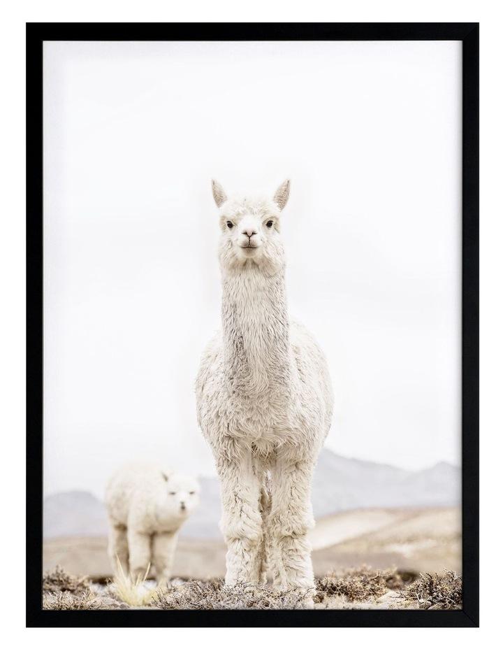 No Drama Llama Black Frame image 1