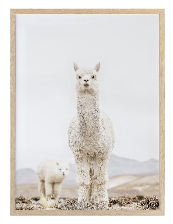 No Drama Llama Oak Frame image 1
