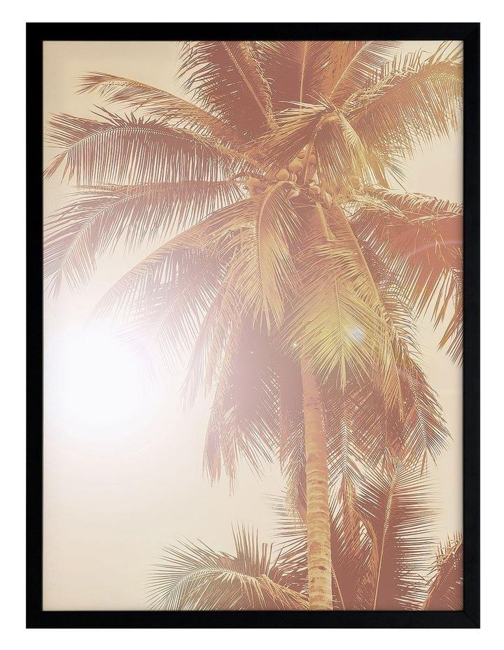 Sunkissed Palm Print Black Frame image 1