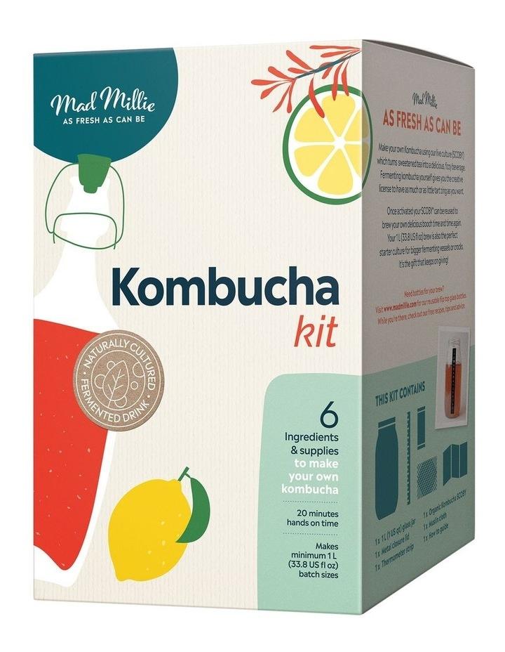 Kombucha kit image 1
