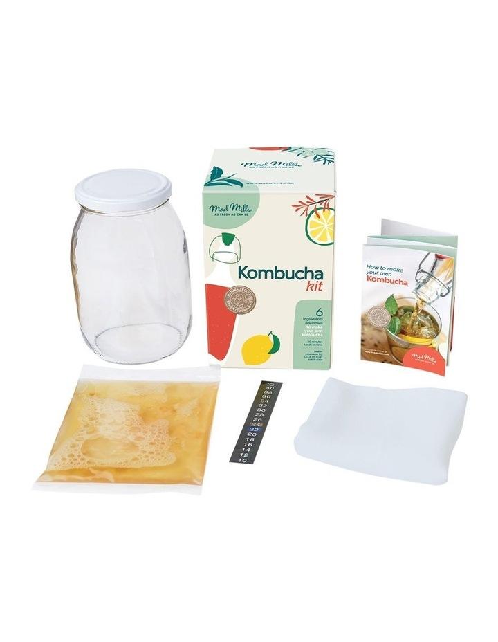Kombucha kit image 3