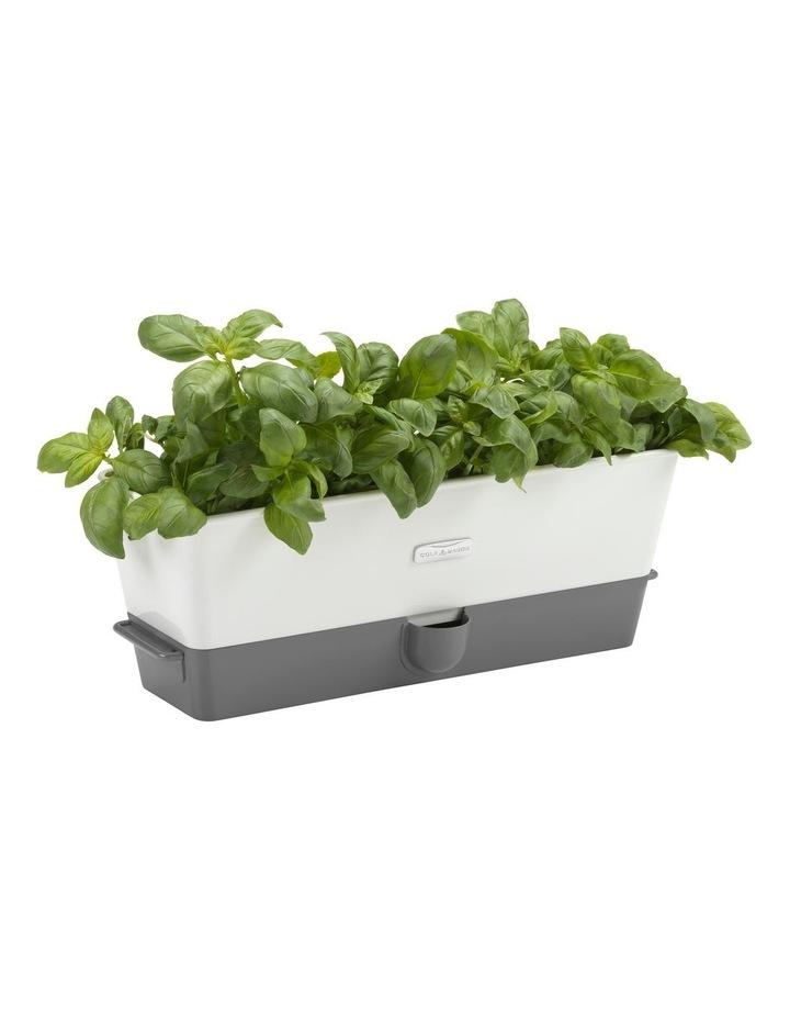 Self Watering Herb Keeper - Triple image 1