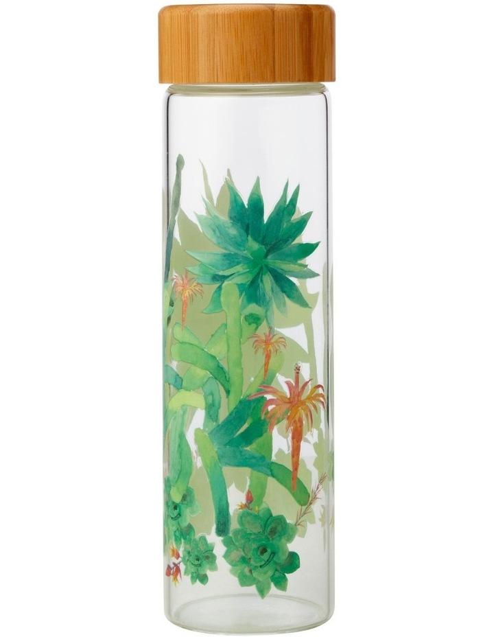 Royal Botanic Garden Arid Garden Glass Water Bottle 550ML Agave image 1