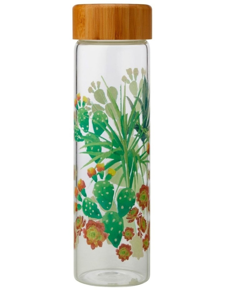 Royal Botanic Garden Arid Garden Glass Water Bottle 550ML Prickly Pear image 1