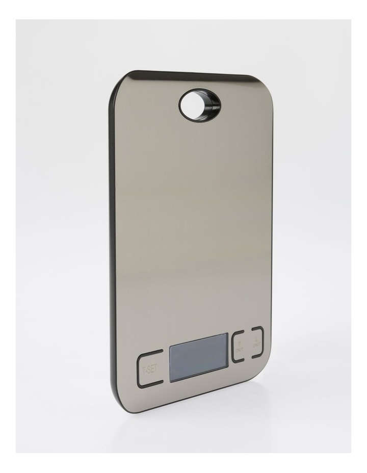 Stainless Steel Battery Scale image 2
