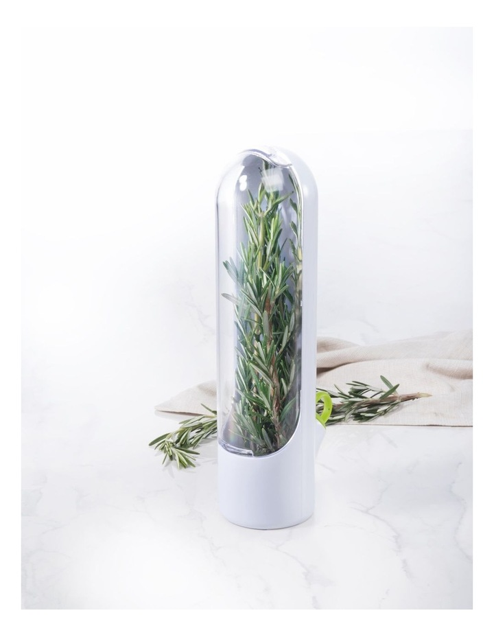 Healthy Eating Herb Keeper image 3