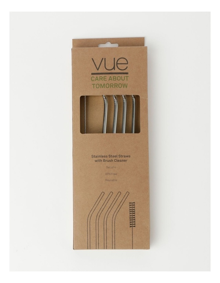 Set Of 4 Stainless Steel Straws with Brush Cleaner image 3
