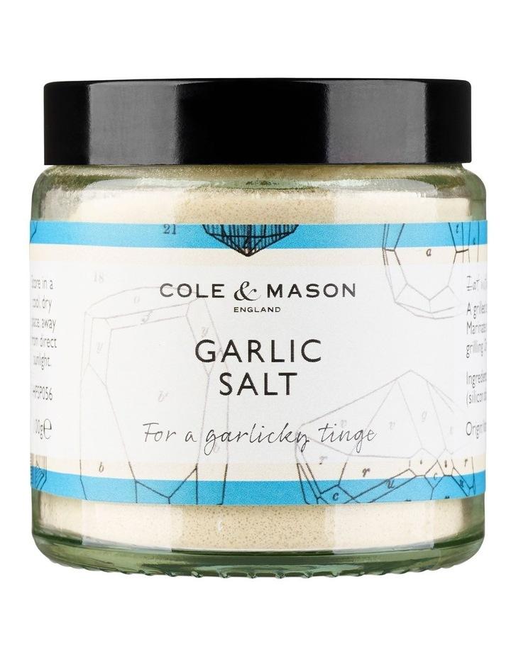 Garlic Salt image 1